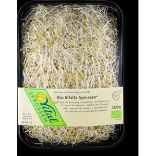 Alfalfa Vitalsprossen (100g)