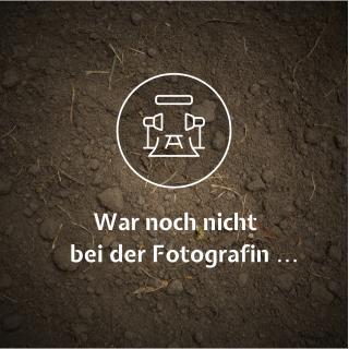 Hof Dannwisch Sauerkraut