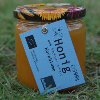 Kornblume - Honig