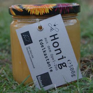 Edelkastanie - Honig